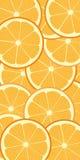 Orange modell Arkivfoton