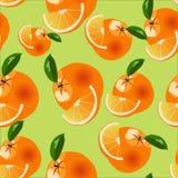 Orange modell för vektor Arkivbilder
