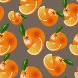 Orange modell för vektor Arkivbild