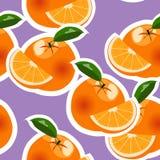 Orange modell för vektor Royaltyfri Foto