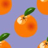Orange modell för vektor Royaltyfri Fotografi