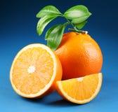 orange moget Royaltyfri Foto