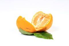 orange moget Royaltyfria Bilder