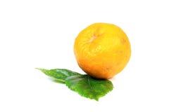orange moget Arkivfoton