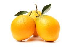 orange moget Arkivbild
