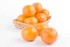 Orange moget i korg Royaltyfri Fotografi