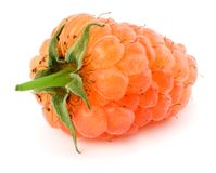 orange mogna hallon som isoleras på den vita bakgrundsmakroen Royaltyfri Foto