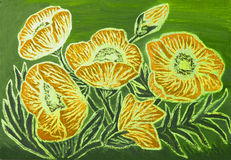 Orange Mohnblumen, malend Stockfotografie