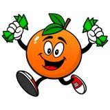 Orange with Money Stock Images