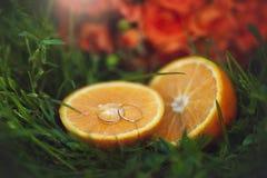 Orange mood Arkivbild