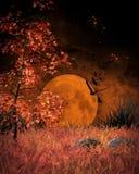 Orange Moon landscape Royalty Free Stock Photos