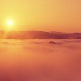 Orange Morgen des Herbstes im felsigen Park Ansicht in langes tiefes Tal voll der schweren bunten Nebel Herbstlandschaft innerhal Stockbilder