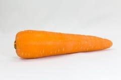 Orange morot Royaltyfri Bild