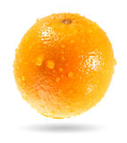 orange mouillez Images stock