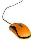 Orange mouse. An isolated shot of a computer mouse wrapped in orange skin royalty free stock photos