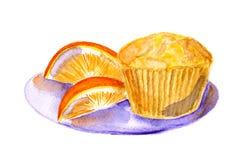 orange muffiner Royaltyfri Foto