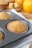 Orange Muffins Stockfoto