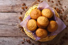 Orange muffins in a basket top view horizontal Royalty Free Stock Photos