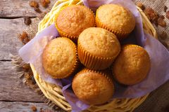 Orange muffins and raisins close-up. horizontal top view Royalty Free Stock Photos