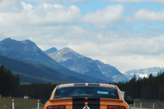 Orange mustang Stock Photography