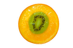 Orange mutation Royalty Free Stock Images
