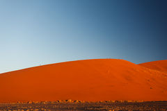 Orange Namibian sand dunes rise softly from desert floor. Royalty Free Stock Photography
