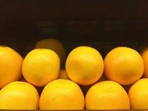 Orange. Nature fruit acidic sour Stock Images