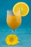 Orange nectar on blue Stock Photos