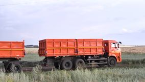 Orange, new ruck with trailer moving on country road on green and yellow field background. Scene. Lorry with a trailer