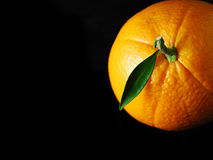 Orange noire Royalty Free Stock Images