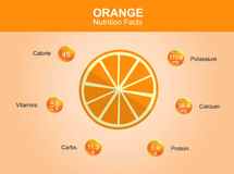Orange nutrition facts, orange fruit with information, orange vector Stock Images