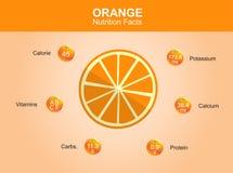 Orange nutrition facts, orange fruit with information, orange vector Stock Images