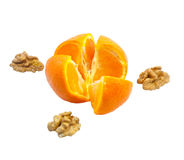 Orange and nuts Stock Images