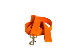 Orange nylon dog lead Stock Photography
