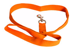 Orange nylon dog lead Royalty Free Stock Images
