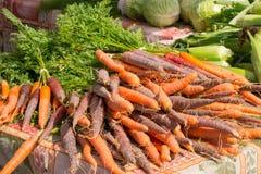 Orange och purpurfärgade morötter på bondemarknaden Arkivfoto