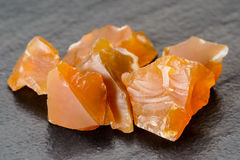 Orange opal Royaltyfri Bild