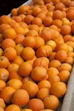 Orange open market Royalty Free Stock Images