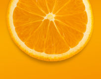 Orange on orange Stock Images