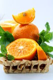 Orange and orange segments and mint Stock Images