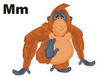 Orange orangutan and black letters. Happy orange monkey and black letters m Stock Photography