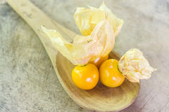 Orange Organic Cape Gooseberries in a wooden spoon Stock Images