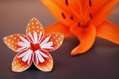 Orange origami flower made of polka dotted paper and lily. Royalty Free Stock Photography