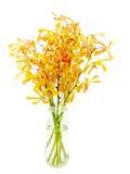Orange orkidér på den isolerade vasen Arkivbild