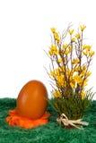 Orange Osterei mit Frühlingsblumen Lizenzfreies Stockbild