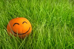 Orange with painted smiling face lays in green grass stock photos
