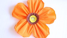Orange paper flower stock footage