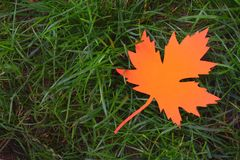 Orange paper maple leaf on green grass. Hello Autumn concept. Copy space. Orange paper maple leaf on green grass. Hello Autumn concept. Copy space royalty free stock photography