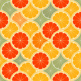 Orange paradise. Vector illustration - orange paradise -seamless Royalty Free Stock Images