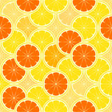 Orange paradise. Seamless vector background Stock Photography